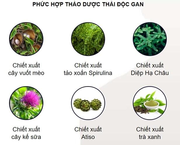 Thành phần của Detox herb