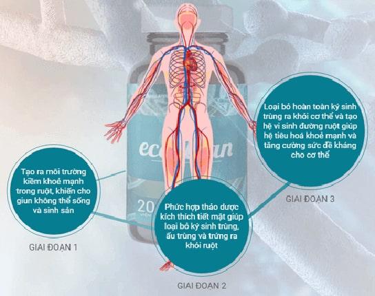 Cơ chế hoạt động Ecoclean