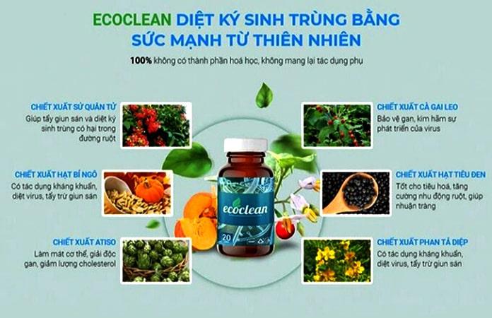 Thành phần chính của Ecoclean